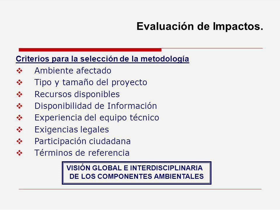 Criterios para la selección de la metodología Ambiente afectado Tipo y tamaño del proyecto Recursos disponibles Disponibilidad de Información Experien