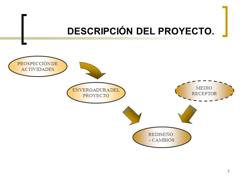 5 DESCRIPCIÓN DEL PROYECTO. PROSPECCIÓN DE ACTIVIDADES ENVERGADURA DEL PROYECTO REDISEÑO - CAMBIOS MEDIO RECEPTOR
