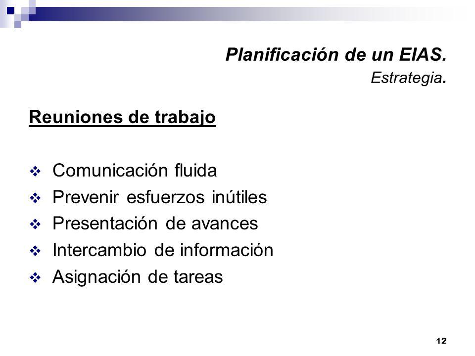 12 Planificación de un EIAS. Estrategia. Reuniones de trabajo Comunicación fluida Prevenir esfuerzos inútiles Presentación de avances Intercambio de i