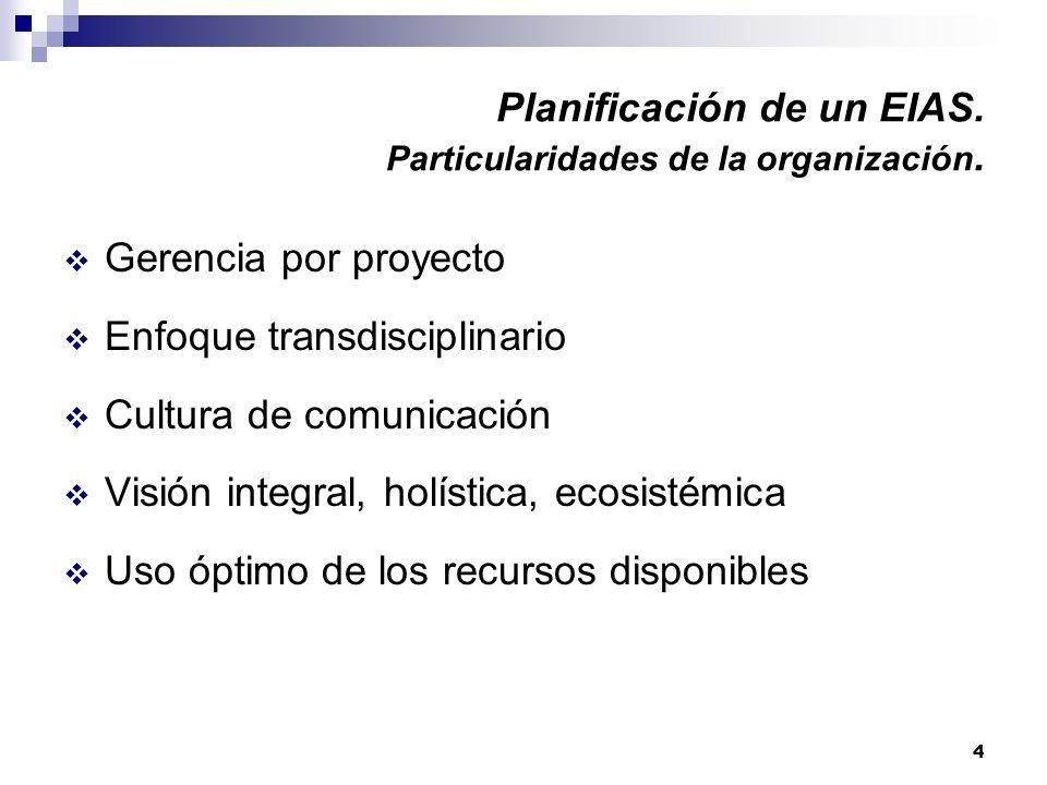 4 Planificación de un EIAS. Particularidades de la organización. Gerencia por proyecto Enfoque transdisciplinario Cultura de comunicación Visión integ