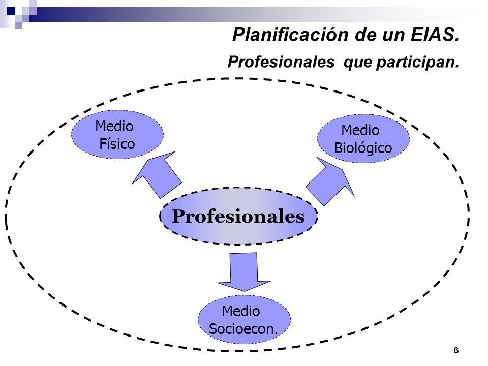 6 Planificación de un EIAS. Profesionales que participan. Profesionales Medio Biológico Medio Físico Medio Socioecon.