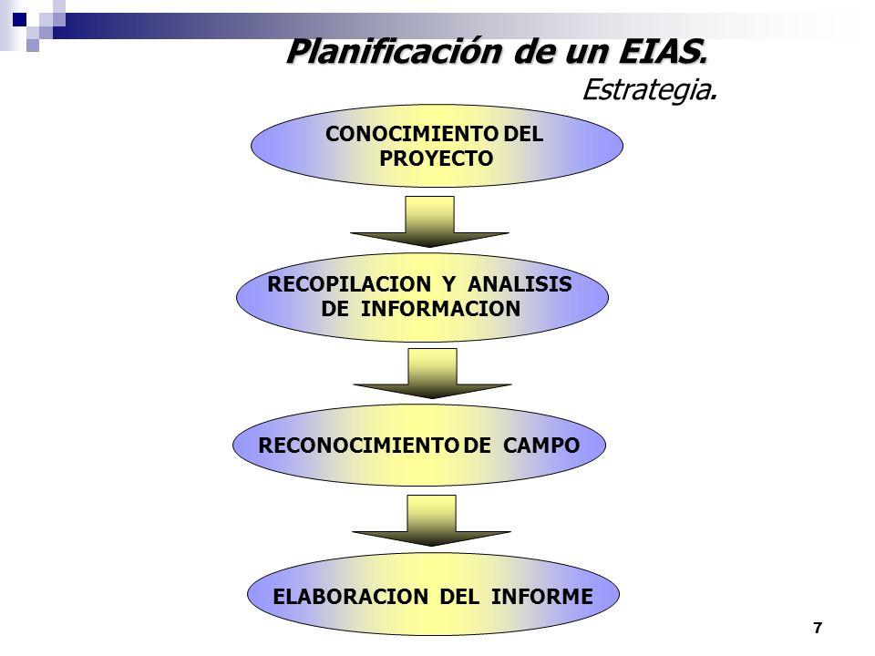 7 Planificación de un EIAS. Estrategia. CONOCIMIENTO DEL PROYECTO RECOPILACION Y ANALISIS DE INFORMACION RECONOCIMIENTO DE CAMPO ELABORACION DEL INFOR