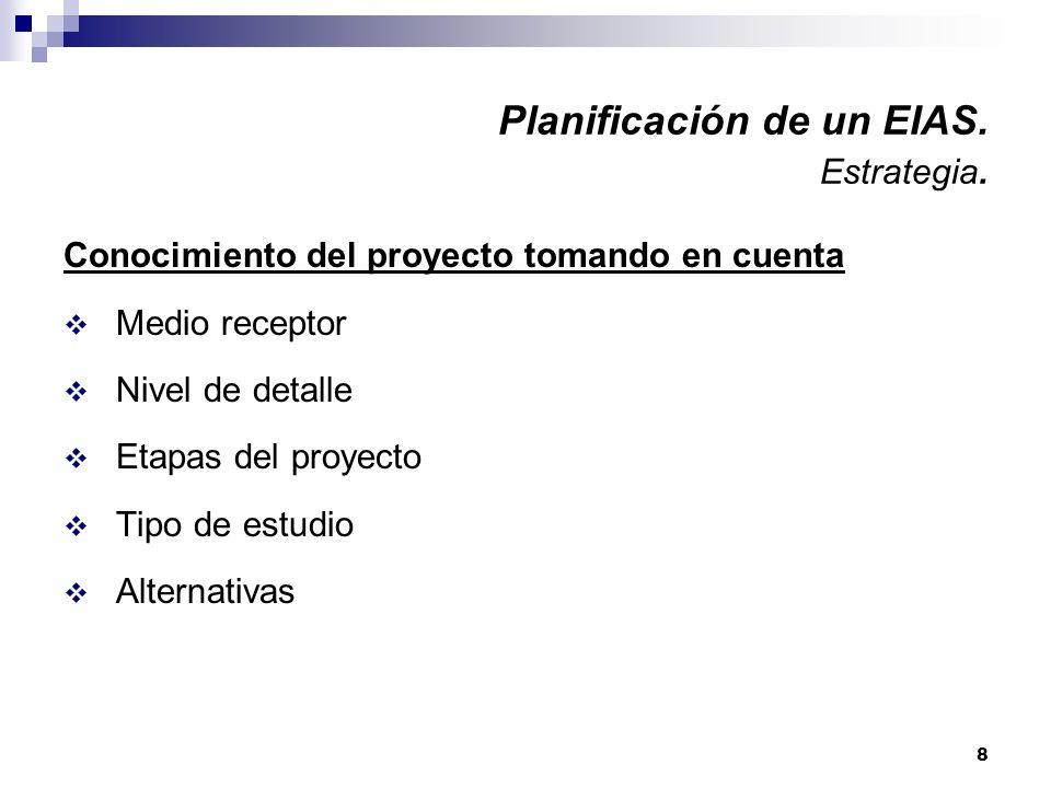 8 Planificación de un EIAS. Estrategia. Conocimiento del proyecto tomando en cuenta Medio receptor Nivel de detalle Etapas del proyecto Tipo de estudi
