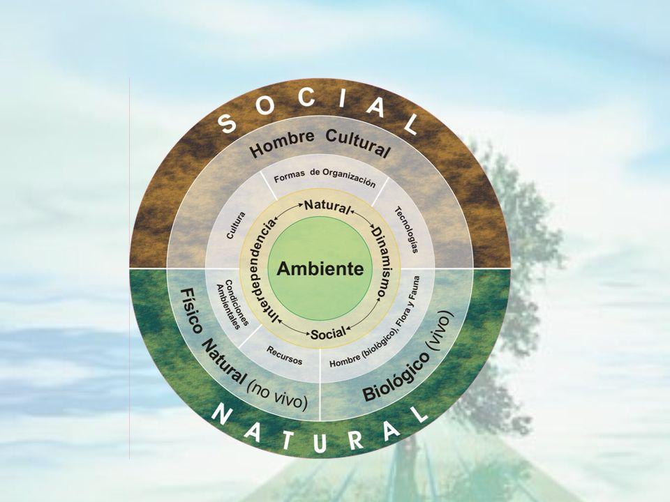 AMBIENTE HUMANO El ambiente humano es el sistema global constituido por elementos naturales y artificiales de naturaleza física, química o biológica,