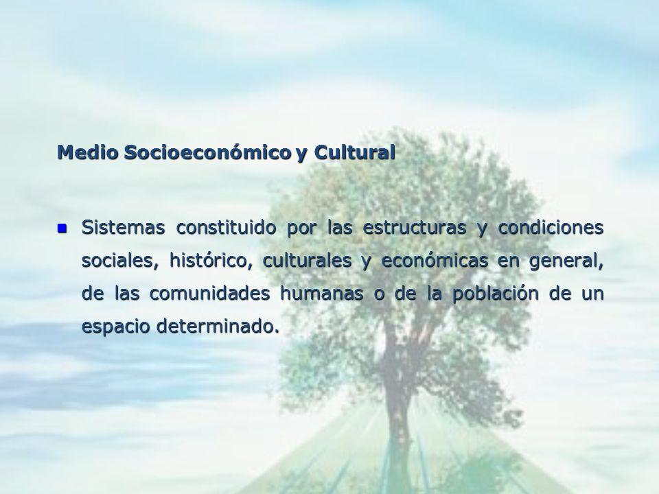 Medio Natural o Biofísico Sistema constituido por los elementos y procesos del ambiente natural tal y como se encuentran y sus relaciones con la pobla