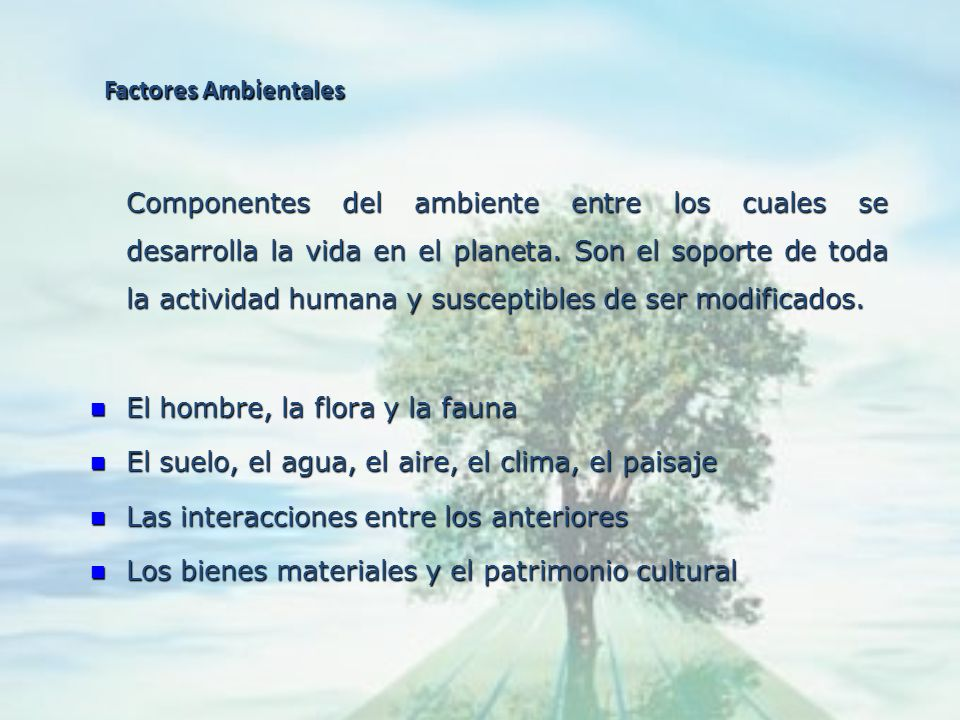 Medio Socioeconómico y Cultural Sistemas constituido por las estructuras y condiciones sociales, histórico, culturales y económicas en general, de las