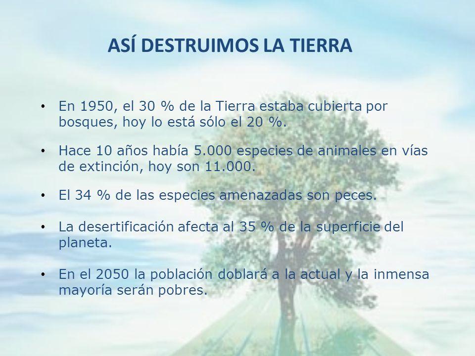 ASÍ DESTRUIMOS LA TIERRA En 1950, el 30 % de la Tierra estaba cubierta por bosques, hoy lo está sólo el 20 %.