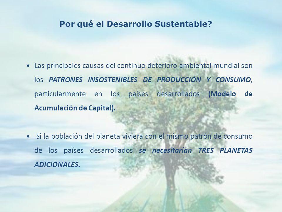 Las principales causas del continuo deterioro ambiental mundial son los PATRONES INSOSTENIBLES DE PRODUCCIÓN Y CONSUMO, particularmente en los países desarrollados (Modelo de Acumulación de Capital).