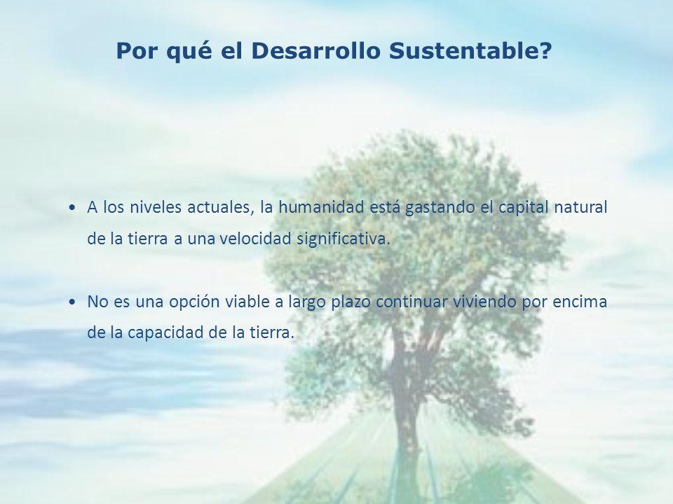 Las principales causas del continuo deterioro ambiental mundial son los PATRONES INSOSTENIBLES DE PRODUCCIÓN Y CONSUMO, particularmente en los países