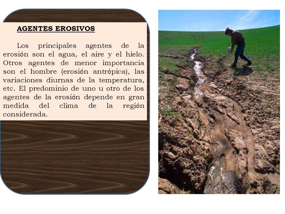 AGENTES EROSIVOS Los principales agentes de la erosi ó n son el agua, el aire y el hielo. Otros agentes de menor importancia son el hombre (erosi ó n