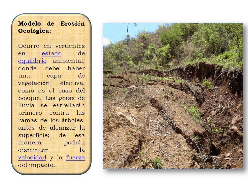 3 Modelo de Erosi ó n Geol ó gica: Ocurre en vertientes en estado de equilibrio ambiental, donde debe haber una capa de vegetaci ó n efectiva, como es