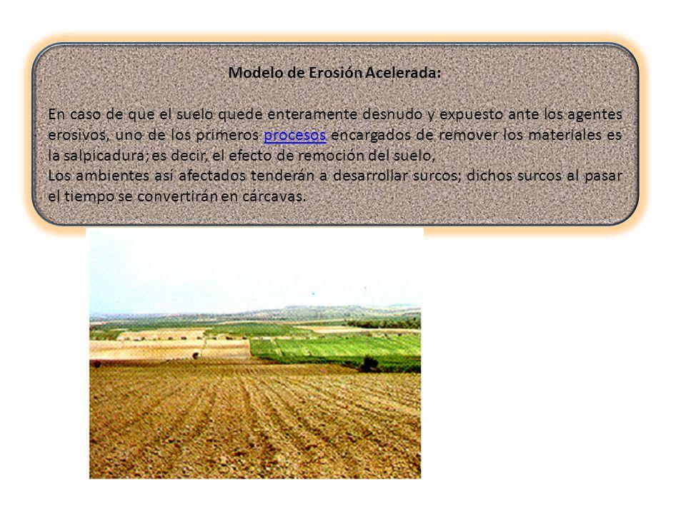 Modelo de Erosión Acelerada: En caso de que el suelo quede enteramente desnudo y expuesto ante los agentes erosivos, uno de los primeros procesos enca
