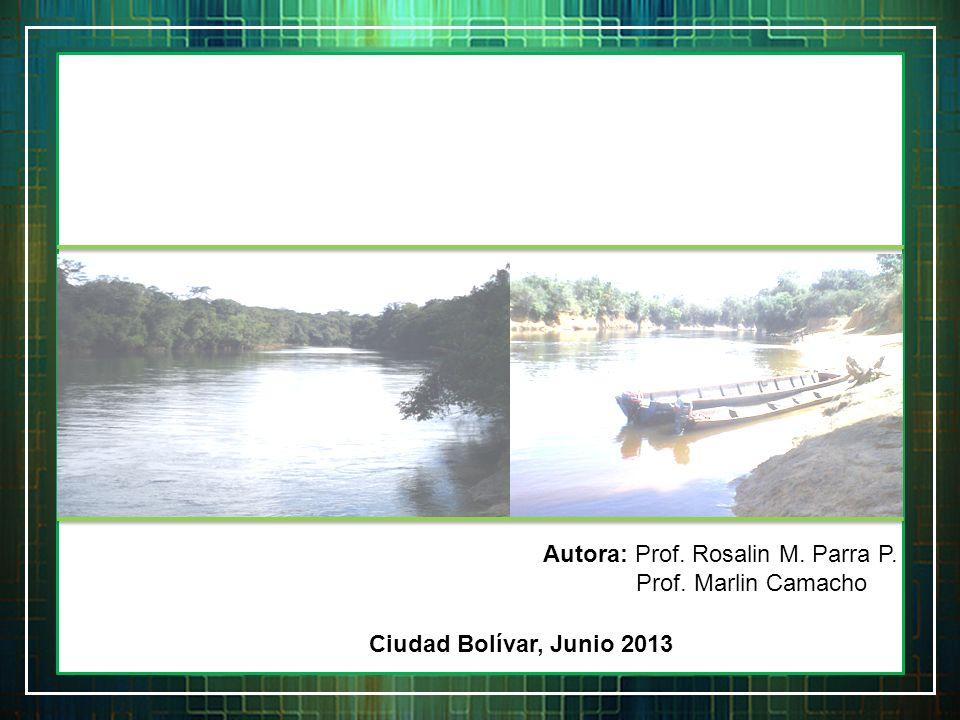 Autora: Prof. Rosalin M. Parra P. Prof. Marlin Camacho Ciudad Bolívar, Junio 2013
