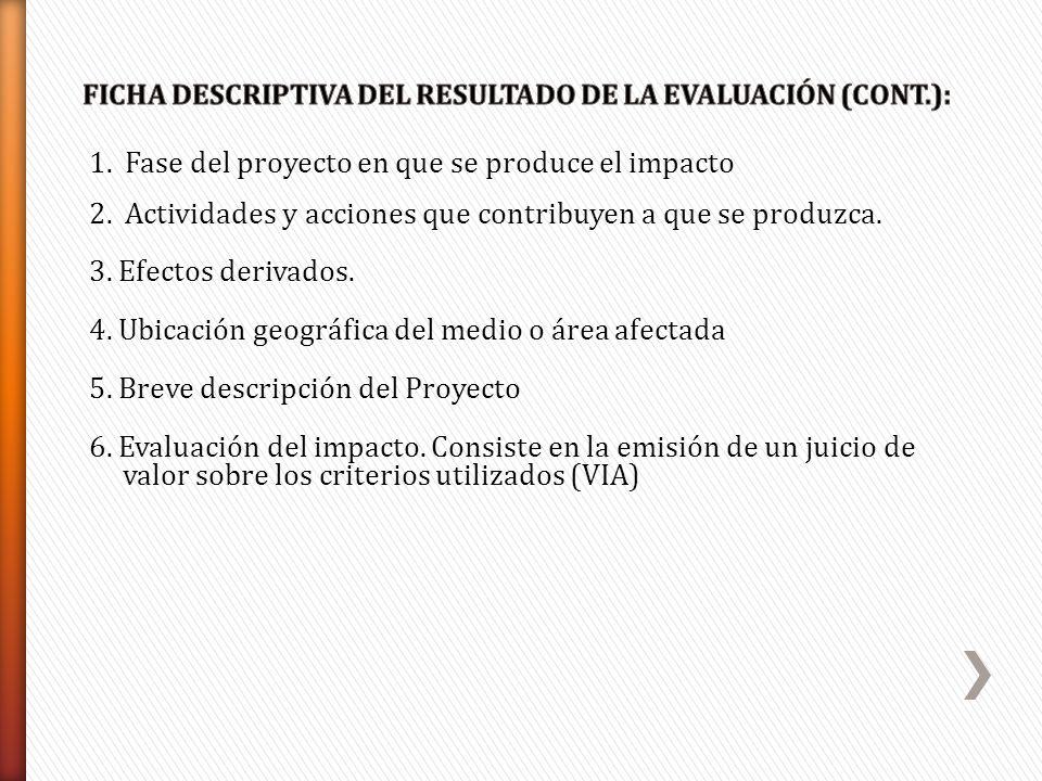 1. Fase del proyecto en que se produce el impacto 2. Actividades y acciones que contribuyen a que se produzca. 3. Efectos derivados. 4. Ubicación geog