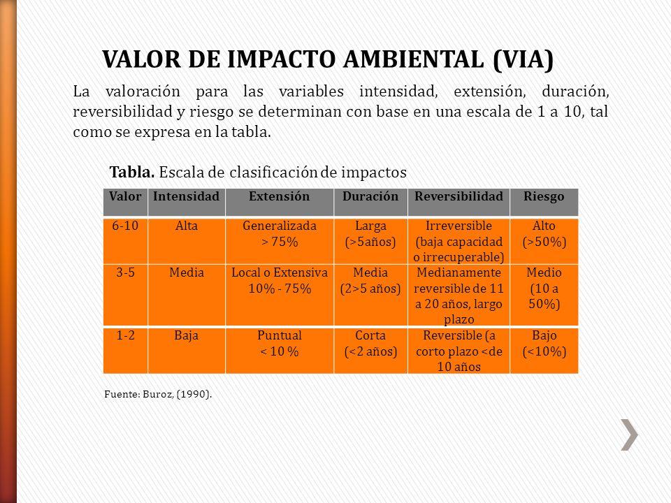 La valoración para las variables intensidad, extensión, duración, reversibilidad y riesgo se determinan con base en una escala de 1 a 10, tal como se