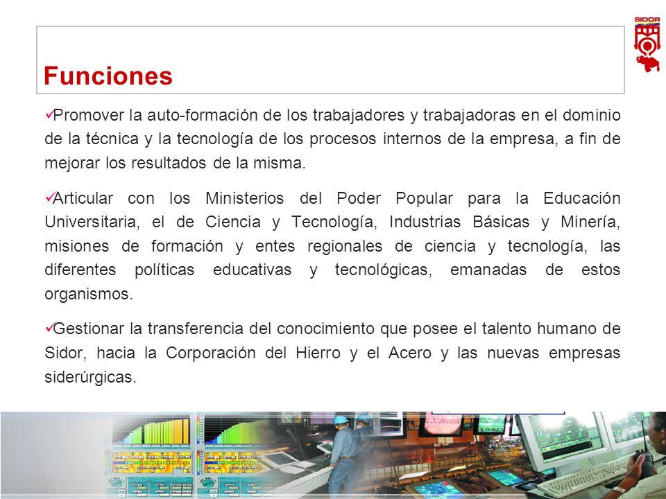 Instituto de Investigaciones Metalúrgicas y de Materiales Siderúrgica del Orinoco Alfredo Maneiro| Dirección Ejecutiva 10 Funciones Promover la auto-f
