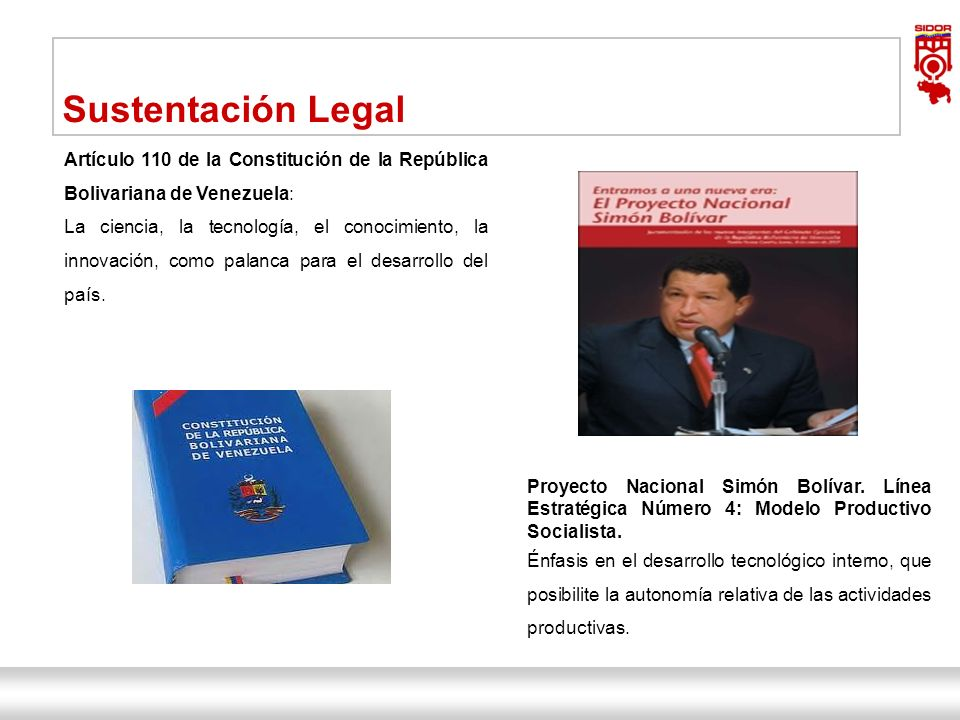 Instituto de Investigaciones Metalúrgicas y de Materiales Siderúrgica del Orinoco Alfredo Maneiro| Dirección Ejecutiva 5 Sustentación Legal Artículo 1