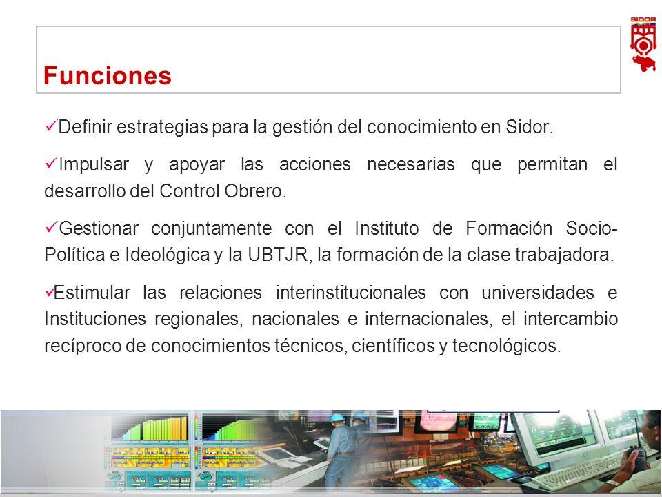 Instituto de Investigaciones Metalúrgicas y de Materiales Siderúrgica del Orinoco Alfredo Maneiro| Dirección Ejecutiva 9 Funciones Definir estrategias
