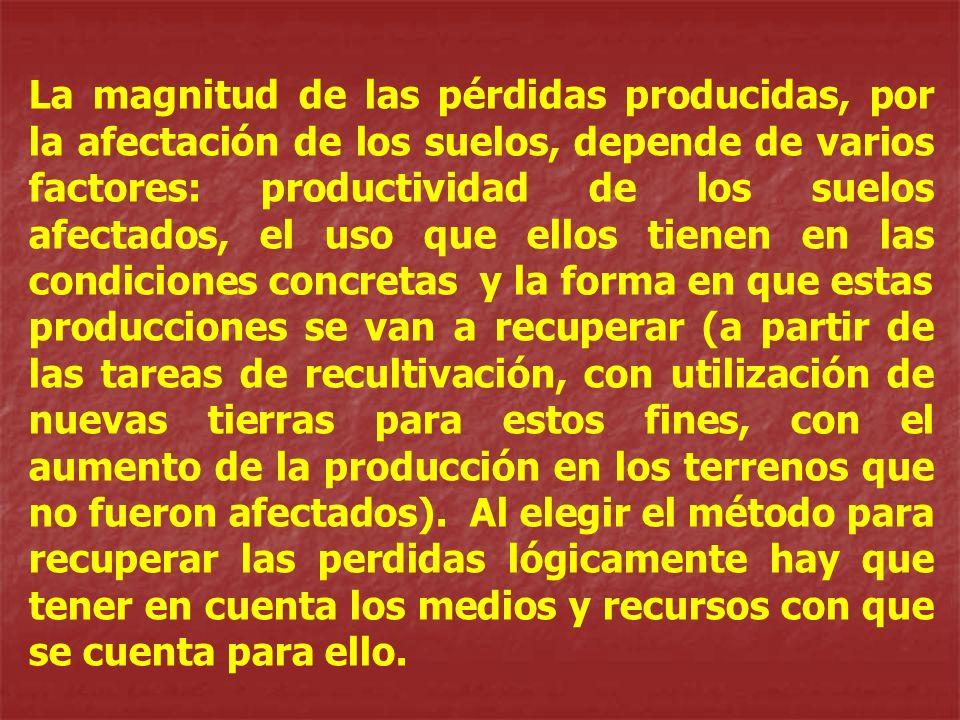 La magnitud de las pérdidas producidas, por la afectación de los suelos, depende de varios factores: productividad de los suelos afectados, el uso que