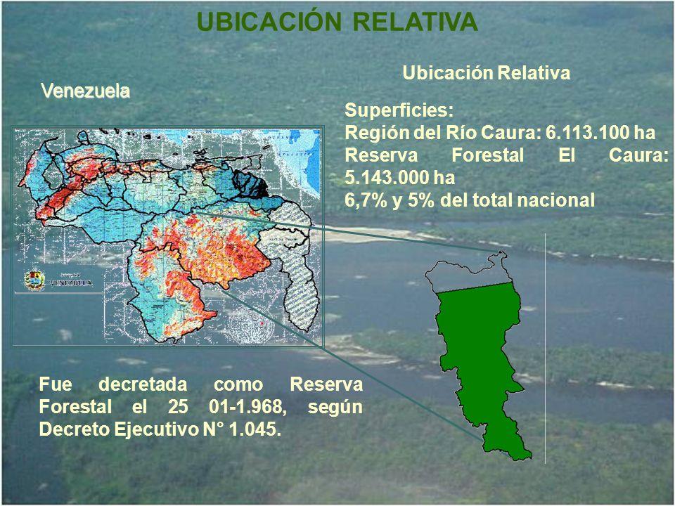 UBICACIÓN RELATIVA Venezuela Ubicación Relativa Superficies: Región del Río Caura: 6.113.100 ha Reserva Forestal El Caura: 5.143.000 ha 6,7% y 5% del