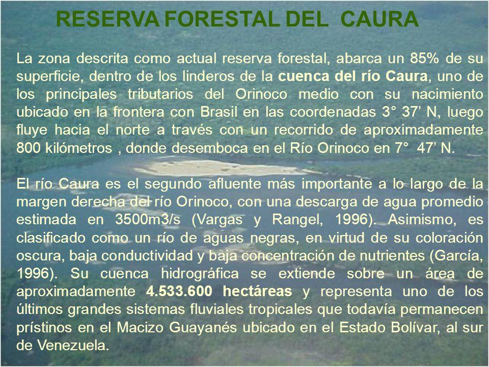La zona descrita como actual reserva forestal, abarca un 85% de su superficie, dentro de los linderos de la cuenca del río Caura, uno de los principal