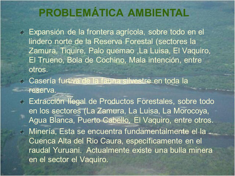 Expansión de la frontera agrícola, sobre todo en el lindero norte de la Reserva Forestal (sectores la Zamura, Tiquire, Palo quemao,La Luisa, El Vaquir