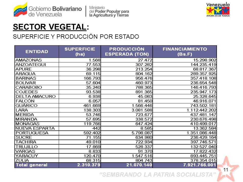 SEMBRANDO LA PATRIA SOCIALISTA 11 SECTOR VEGETAL: SUPERFICIE Y PRODUCCIÓN POR ESTADO