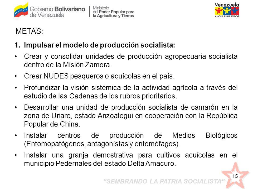 SEMBRANDO LA PATRIA SOCIALISTA 15 1.Impulsar el modelo de producción socialista: Crear y consolidar unidades de producción agropecuaria socialista den