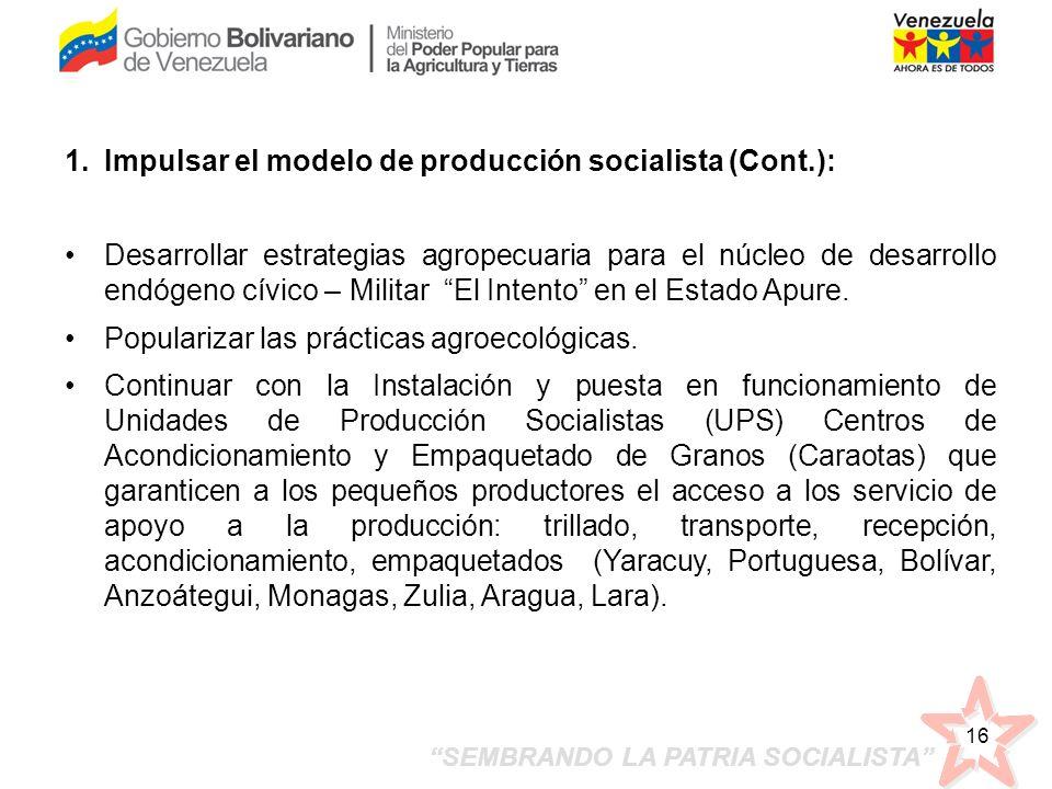 SEMBRANDO LA PATRIA SOCIALISTA 16 1.Impulsar el modelo de producción socialista (Cont.): Desarrollar estrategias agropecuaria para el núcleo de desarr