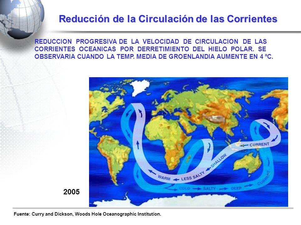 ¿QUE ES LO PEOR QUE PUEDE OCURRIR? REDUCCION PROGRESIVA DE LA VELOCIDAD DE CIRCULACION DE LAS CORRIENTES OCEANICAS POR DERRETIMIENTO DEL HIELO POLAR.
