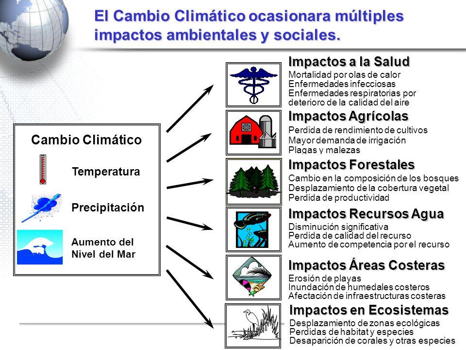El Cambio Climático ocasionara múltiples impactos ambientales y sociales. Cambio Climático Aumento del Nivel del Mar Temperatura Precipitación Impacto