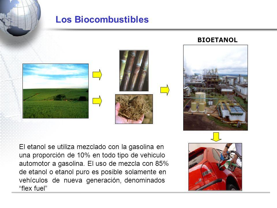 Los Biocombustibles BIOETANOL El etanol se utiliza mezclado con la gasolina en una proporción de 10% en todo tipo de vehiculo automotor a gasolina. El