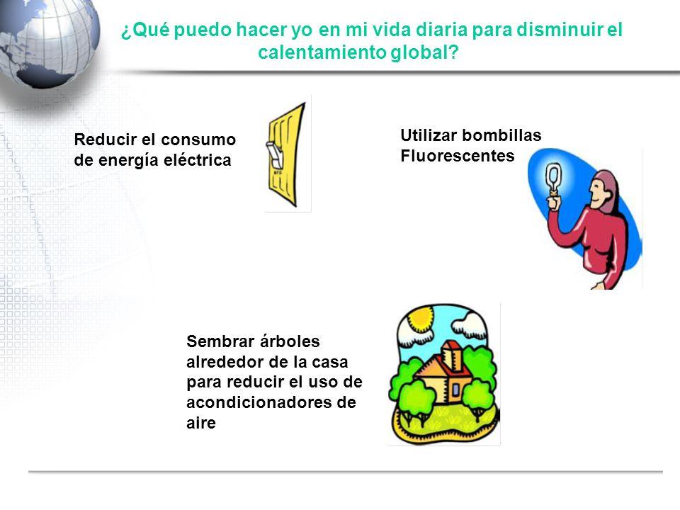 Fuente: Shell ¿Qué puedo hacer yo en mi vida diaria para disminuir el calentamiento global? Reducir el consumo de energía eléctrica Utilizar bombillas