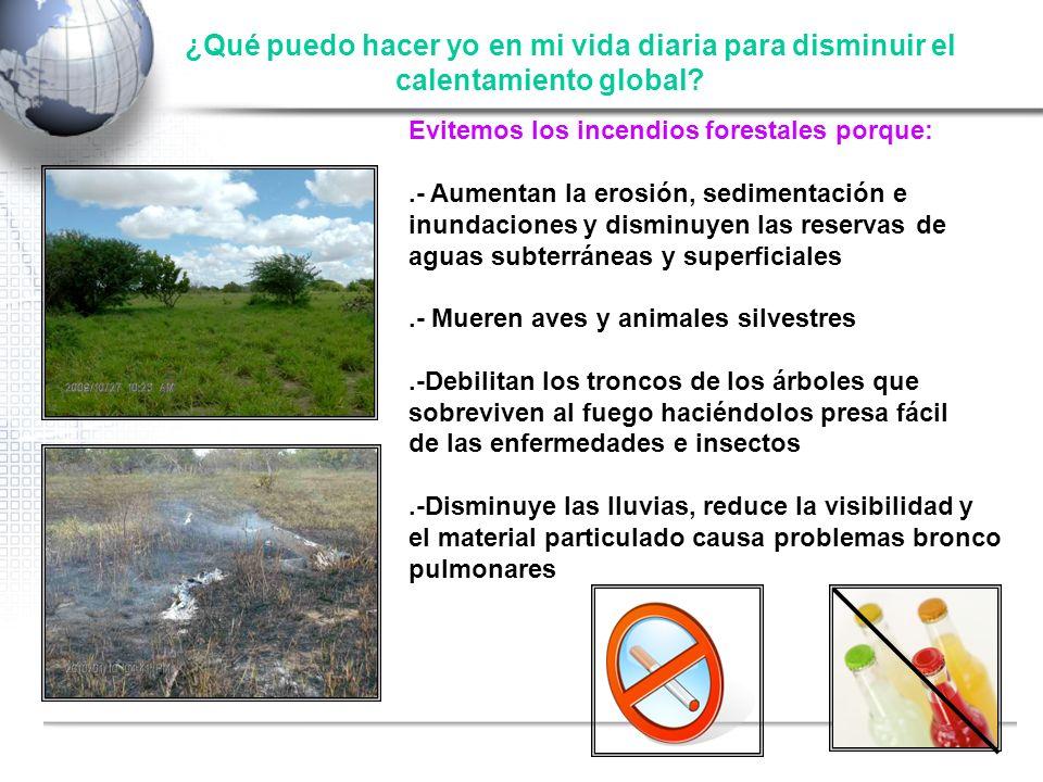 Fuente: Shell ¿Qué puedo hacer yo en mi vida diaria para disminuir el calentamiento global? Evitemos los incendios forestales porque:.- Aumentan la er