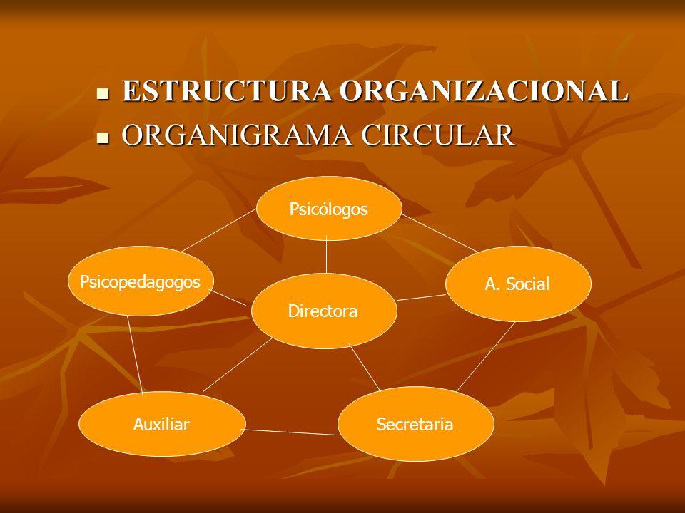 ESTRUCTURA ORGANIZACIONAL ESTRUCTURA ORGANIZACIONAL ORGANIGRAMA CIRCULAR ORGANIGRAMA CIRCULAR Directora Psicopedagogos Auxiliar Psicólogos Secretaria