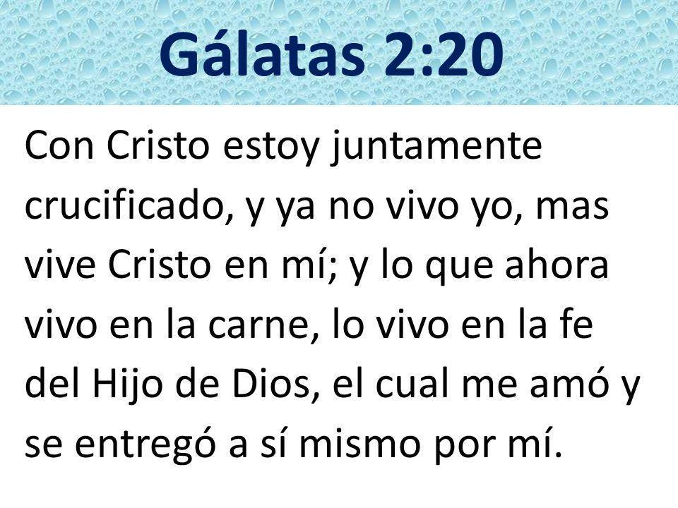 Gálatas 2:20 Con Cristo estoy juntamente crucificado, y ya no vivo yo, mas vive Cristo en mí; y lo que ahora vivo en la carne, lo vivo en la fe del Hi