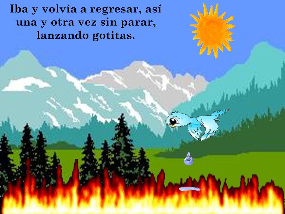 Una pequeñita ave, fue a un pequeño río, mojo sus alas y regreso sobre el gran incendio para apagarlo.