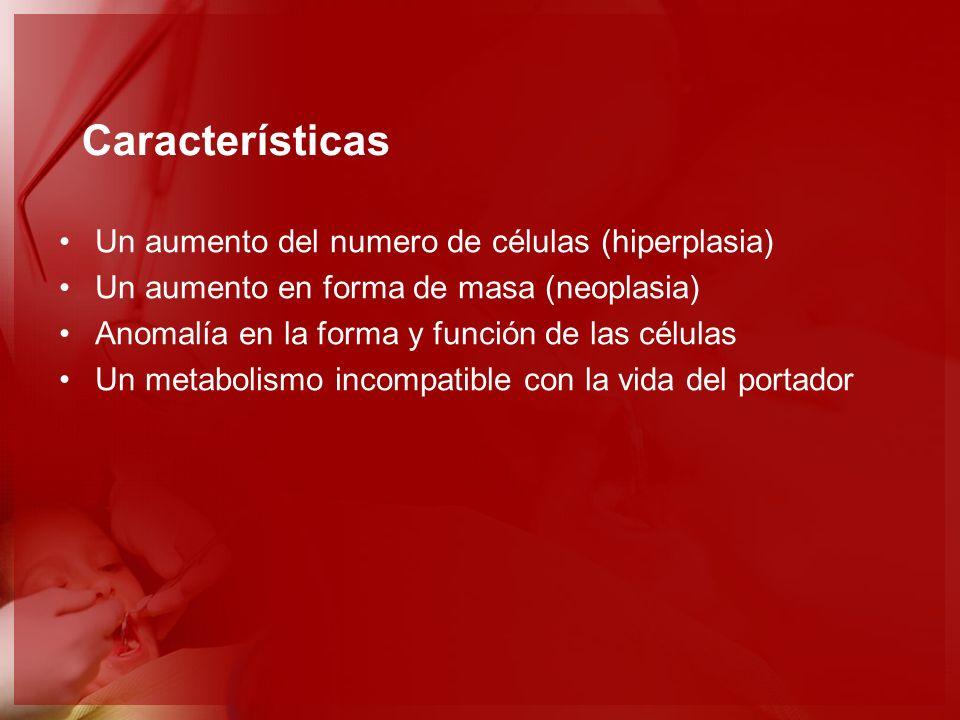 Características Un aumento del numero de células (hiperplasia) Un aumento en forma de masa (neoplasia) Anomalía en la forma y función de las células U