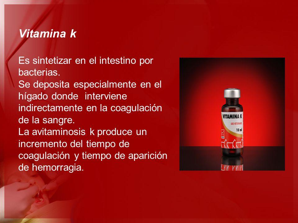 Vitamina k Es sintetizar en el intestino por bacterias. Se deposita especialmente en el hígado donde interviene indirectamente en la coagulación de la