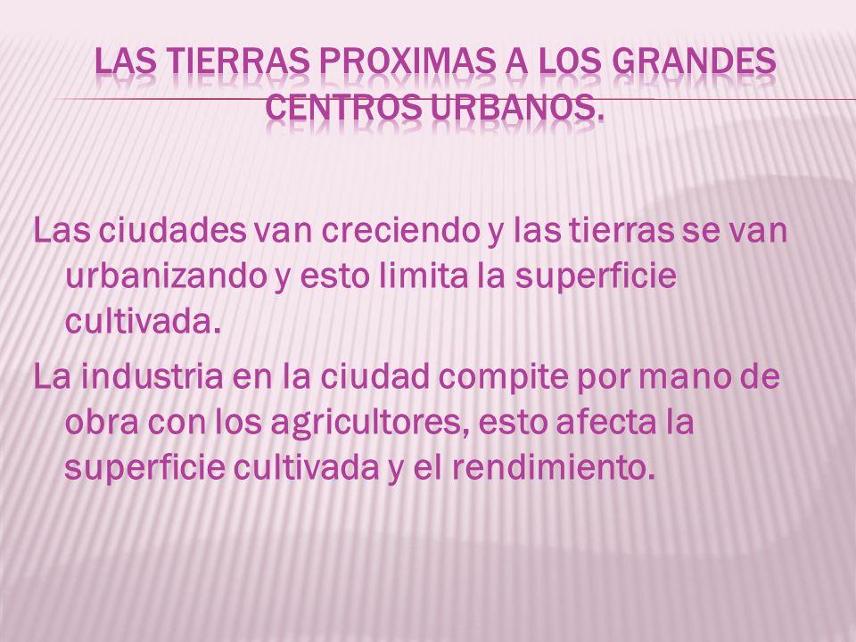 Las ciudades van creciendo y las tierras se van urbanizando y esto limita la superficie cultivada.