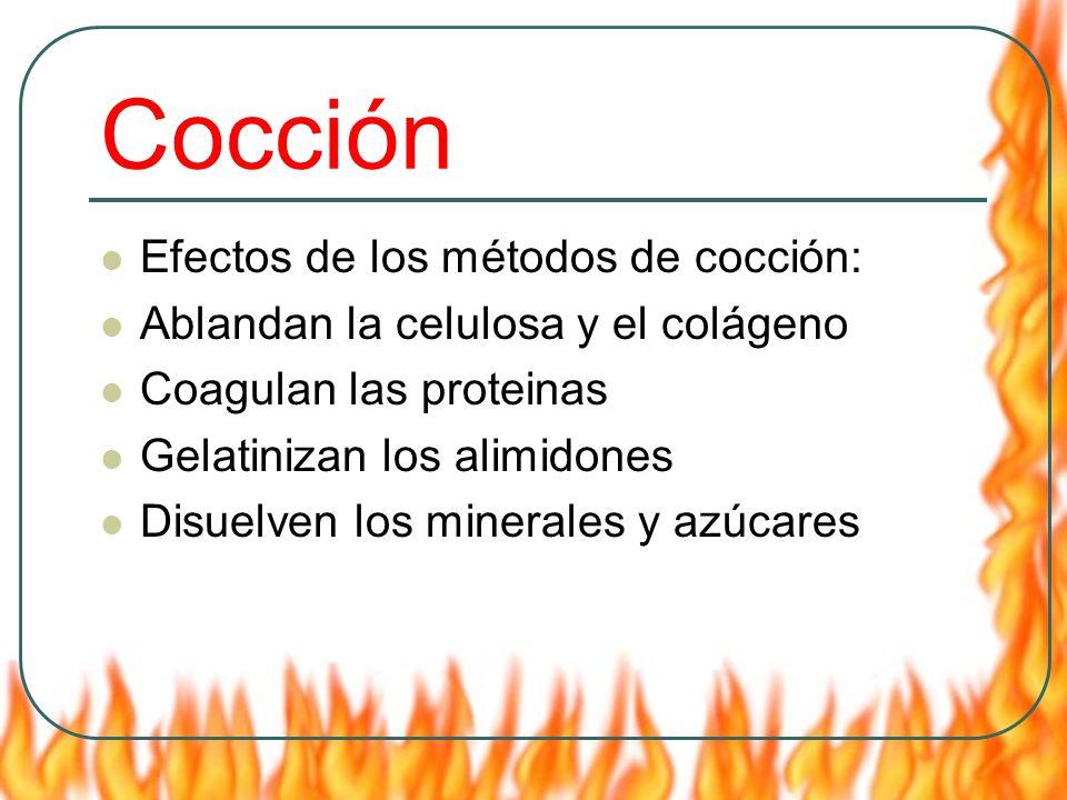 Cocción Efectos de los métodos de cocción: Ablandan la celulosa y el colágeno Coagulan las proteinas Gelatinizan los alimidones Disuelven los minerale