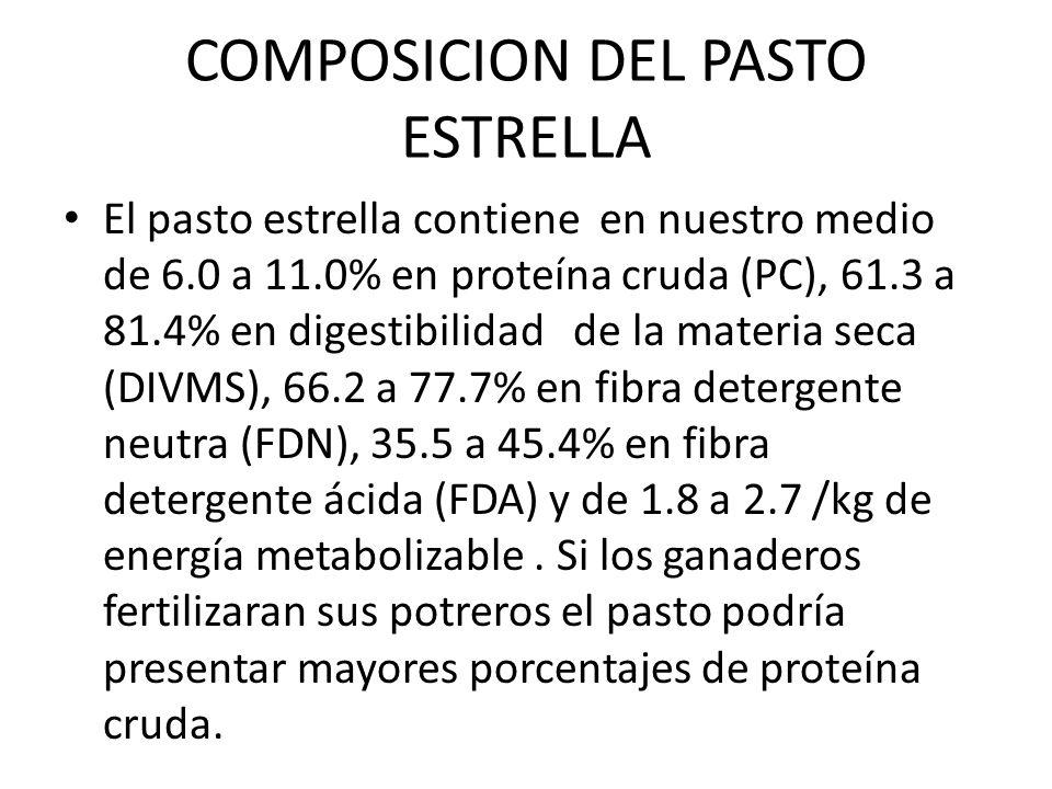 COMPOSICION DEL PASTO ESTRELLA El pasto estrella contiene en nuestro medio de 6.0 a 11.0% en proteína cruda (PC), 61.3 a 81.4% en digestibilidad de la