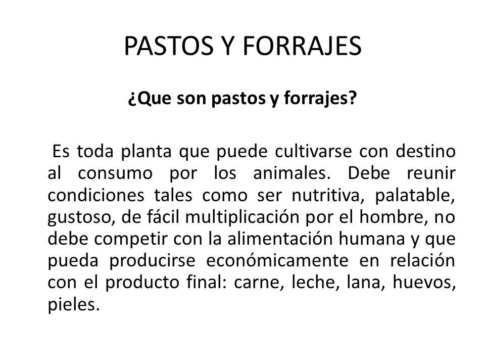 PASTOS Y FORRAJES ¿Que son pastos y forrajes? Es toda planta que puede cultivarse con destino al consumo por los animales. Debe reunir condiciones tal