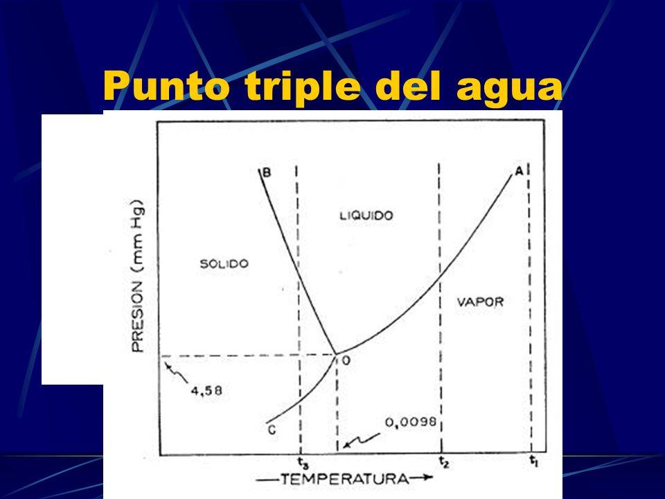 Etapas de la congelación del agua Nucleación Crecimiento de los cristales