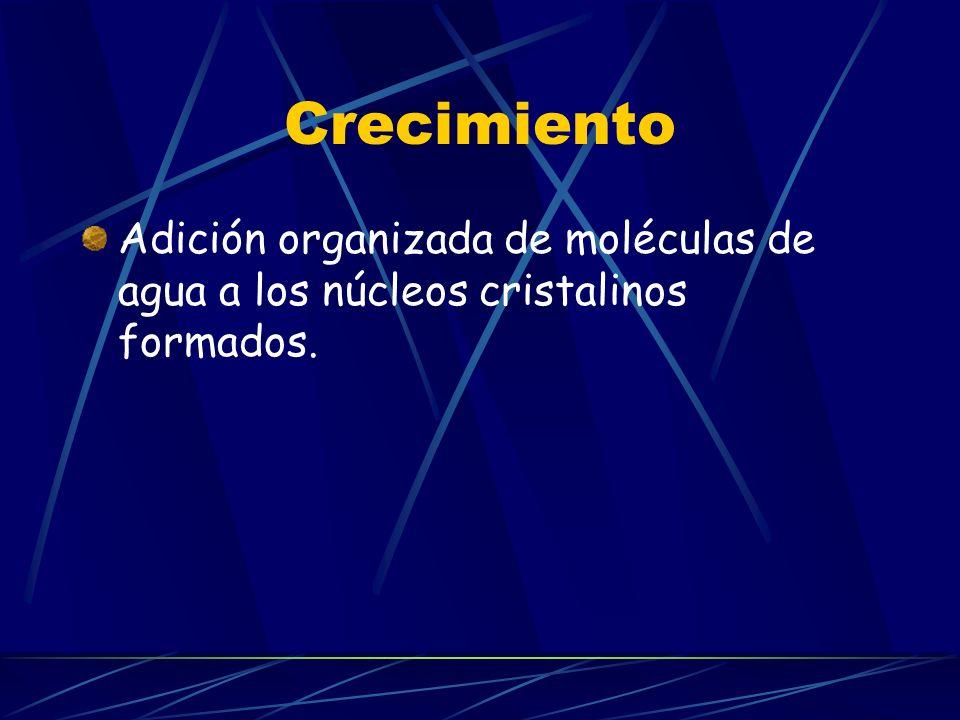 Crecimiento Adición organizada de moléculas de agua a los núcleos cristalinos formados.