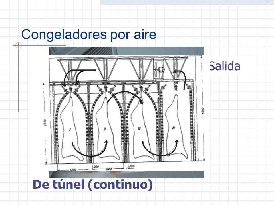 Congeladores por aire Tipos de congeladores de ráfaga Por lotes (discontinuo)