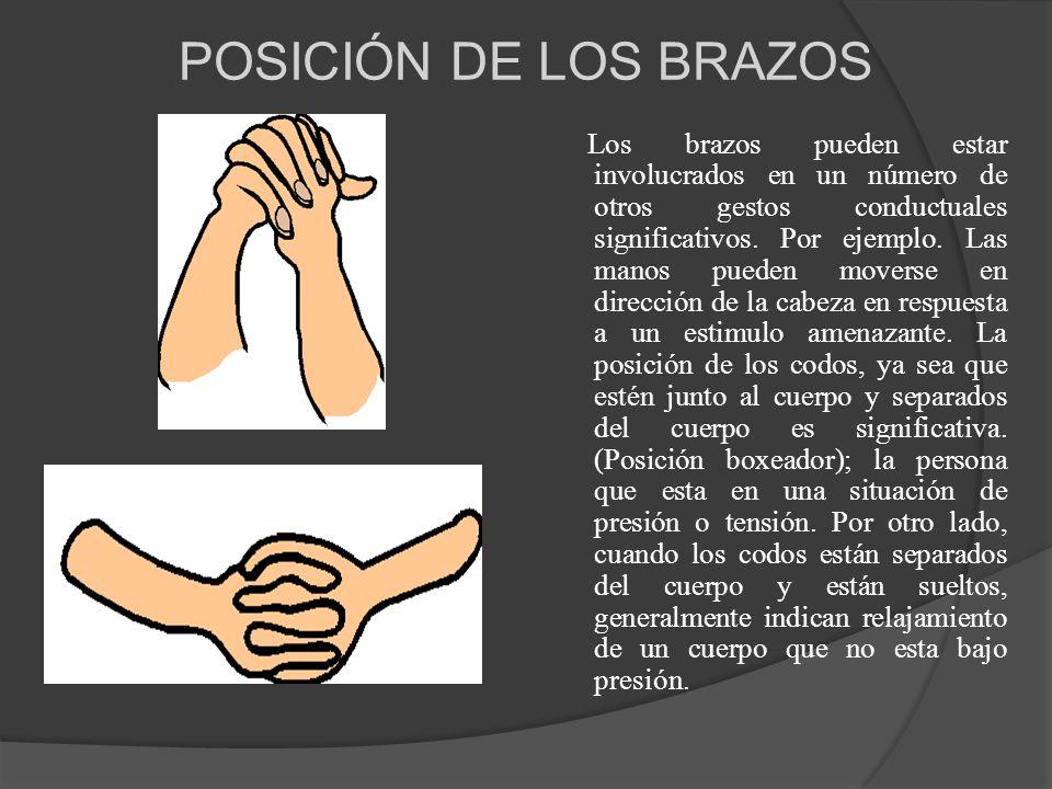 POSICIÓN DE LOS BRAZOS Los brazos pueden estar involucrados en un número de otros gestos conductuales significativos. Por ejemplo. Las manos pueden mo