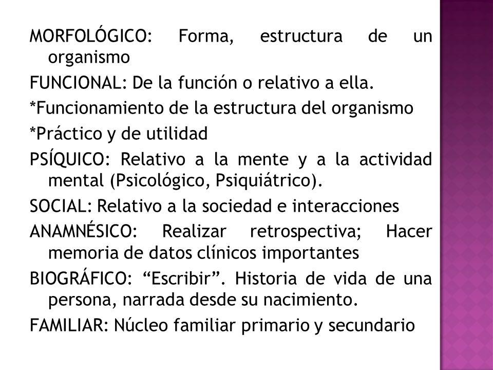 MORFOLÓGICO: Forma, estructura de un organismo FUNCIONAL: De la función o relativo a ella. *Funcionamiento de la estructura del organismo *Práctico y