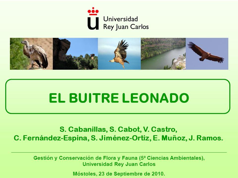 Índice Gestión y Conservación de Flora y Fauna 1.Antecedentes.