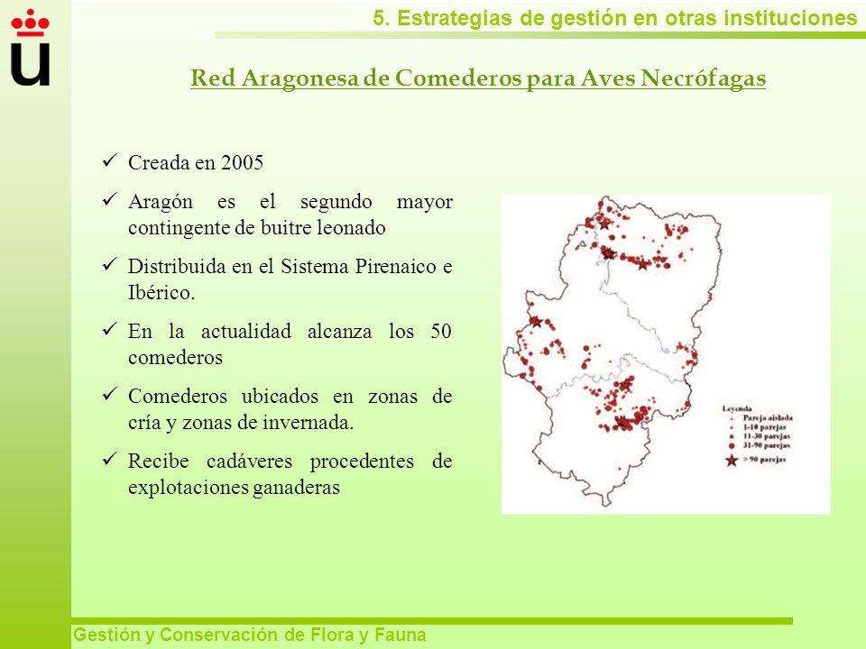 5. Estrategias de gestión en otras instituciones Gestión y Conservación de Flora y Fauna Red Aragonesa de Comederos para Aves Necrófagas Creada en 200